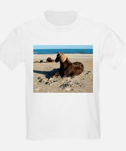 Rock and Stroll Rocky Mountain Stallion T-Shirt