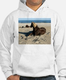 Rock and Stroll Rocky Mountain Stallion Hoodie