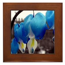 Bleeding Heart Flowers (Blue Edit) Framed Tile