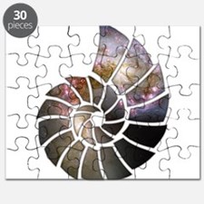 Cosmic Shell Puzzle