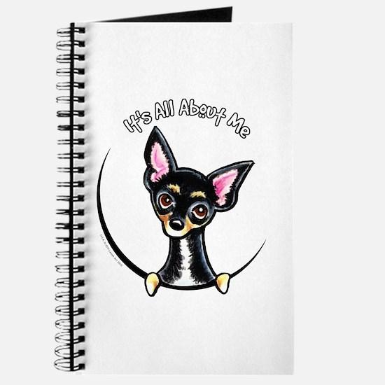 B/T Chihuahua IAAM Journal