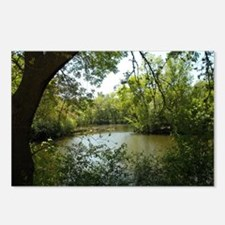 River Trees Postcards (Package of 8)