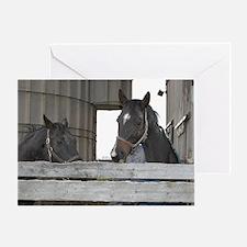 Just Horses Greeting Card
