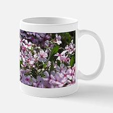 Phlox02 Mug