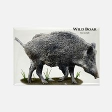Wild Boar Rectangle Magnet