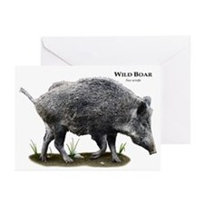 Wild Boar Greeting Cards (Pk of 20)