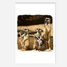 Meerkat Trio Postcards (Package of 8)