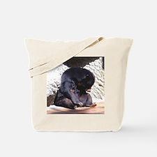sunbear2 Tote Bag