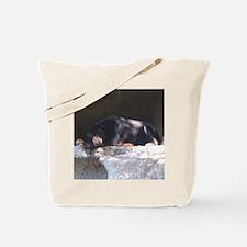 sunbear3 Tote Bag