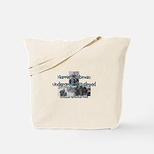 ABH Harriet Tubman NM Tote Bag