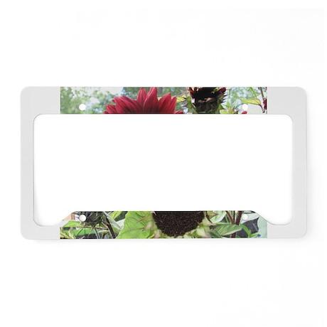Red Sunflower License Plate Holder