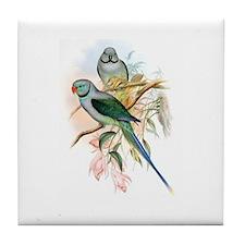 Malabar Parakeets Tile Coaster