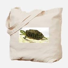 Painting of Painted Turtle Tote Bag