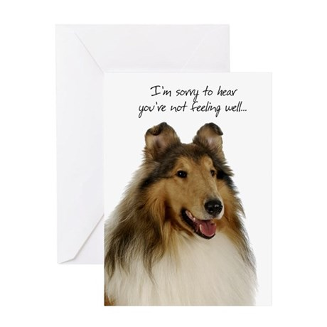 Collie Get Well Card