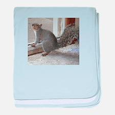Squirrel Greeting baby blanket