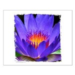 Purple Lily Small Poster