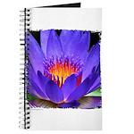 Purple Lily Journal