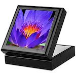 Purple Lily Keepsake Box