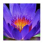 Purple Lily Tile Coaster