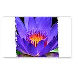 Purple Lily Rectangle Sticker