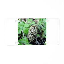 Yellow Morel Mushroom Aluminum License Plate