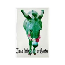 EASTER DONKEY Rectangle Magnet