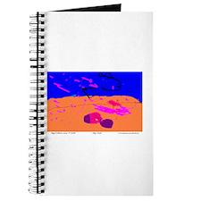 Abby's Beach Journal