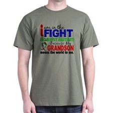 In The Fight 2a Autism T-Shirt