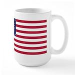 US - 38 Stars Concentric Circles Flag Mug