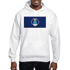 USAF Flag Hoodie