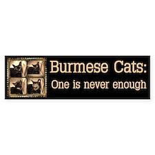 Box cat, sepia x 4 Bumper Sticker
