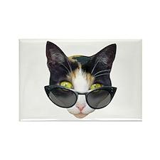 Cat Sunglasses Rectangle Magnet
