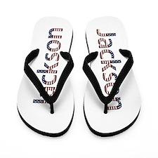 Jackson Stars and Stripes Flip Flops