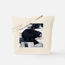 sloth bear Tote Bag
