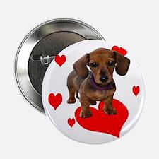 "Love Dachshunds 2.25"" Button"