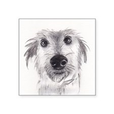 Cute scruffy lurcher Sticker