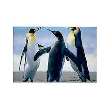 Penguins! Rectangle Magnet