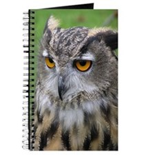...Eagle Owl 01... Journal