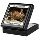 Brush Rabbit Keepsake Box