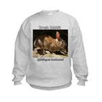 Brush Rabbit Sweatshirt