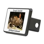 Brush Rabbit Hitch Cover