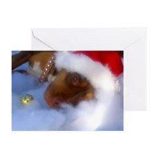 Santa Paws Greeting Cards (Pk of 10)