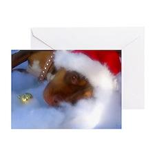 Santa Paws Greeting Cards (Pk of 10)