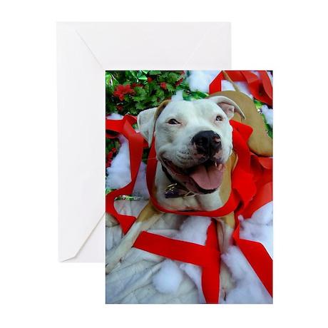 Christmas Bully Greeting Cards (Pk of 10)