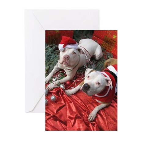 Pit Bull Christmas Greeting Cards, Thank You Cards, and Custom ...