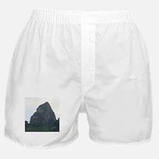 King Kong Profile Boxer Shorts