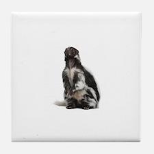 Moufette skunk Tile Coaster