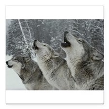 "Wolf Square Car Magnet 3"" x 3"""