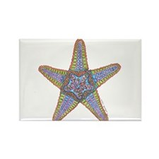 Starfish Squared Rectangle Magnet