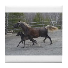 Blondie and Selig Running Tile Coaster